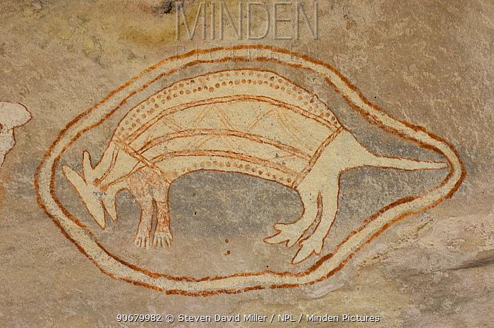 Aboriginal rock art painting of mammal at Main Art Site, Mt Borradaile, Arnhem Land, Northern Territory, Australia  -  Steven David Miller/ npl