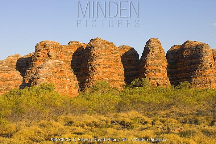 The Beehives, Purnululu, Bungle Bungle Range National Park, Western Australia, September 2006  -  Steven David Miller/ npl