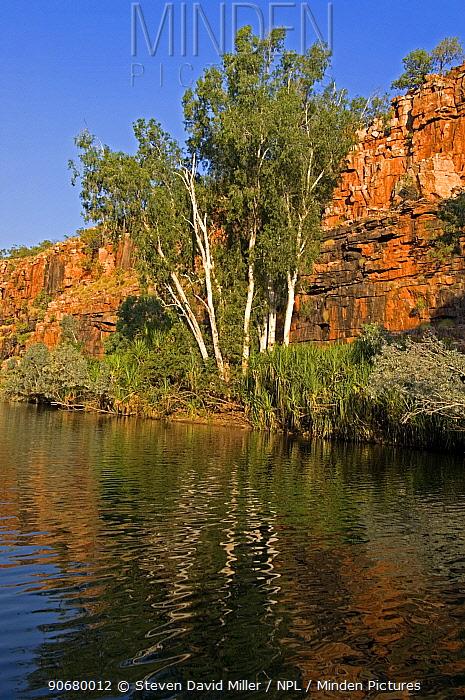 Sandstone cliff at sunset, Chamberlain Gorge, El Questro, The Kimberley, Western Australia, september 2007  -  Steven David Miller/ npl