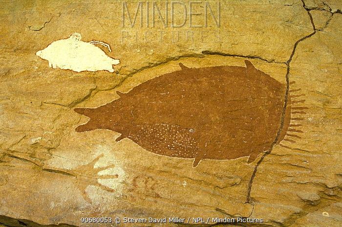 Aboriginal cave paintings at Mona Lisa art site, one of the Quinkan rock art sites, Jowalbinna, Cape York, Queensland, Australia  -  Steven David Miller/ npl