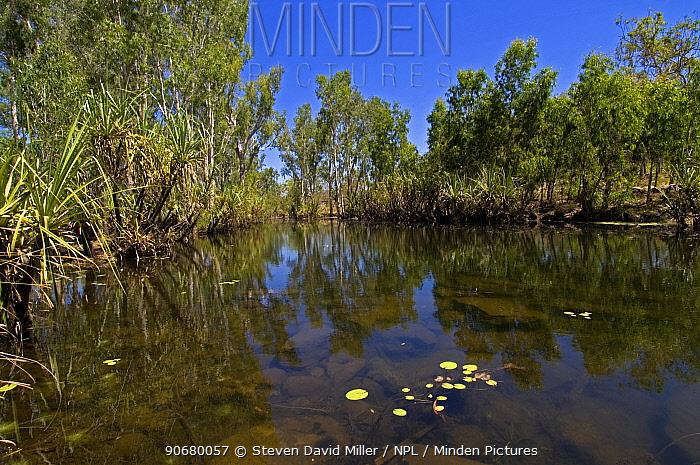 King Edward River, The Kimberley, Western Australia, September 2007  -  Steven David Miller/ npl