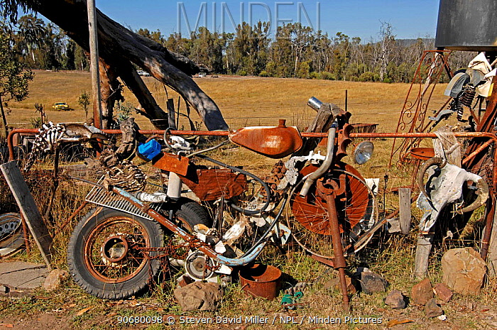 Seldom Seen, along the Snowy River Road, Victoria, Australia 2007 The last place heading north where one may buy fuel The owner has an unusual collection of skeletal matter on display next to the pumps,  -  Steven David Miller/ npl