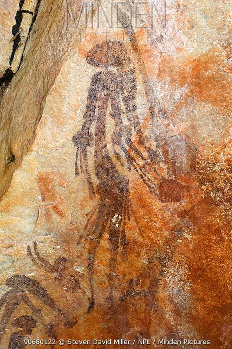 Bradshaw rock art, Gwion Gwion, Northern Kimberley region and the Mitchell Plateau, Western Australia  -  Steven David Miller/ npl
