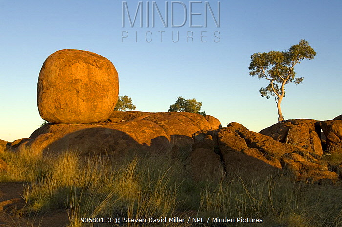 The Devils Marbles, a series of sandstone rocks perched at seemingly impossible angles, sacred to the regional Aboriginal people Devils Marbles Conservation Park, Northern Territory, Australia, July 2007  -  Steven David Miller/ npl