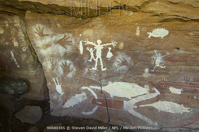 Quinkan-style Aboriginal rock art at the Mona Lisa Aboriginal Rock Art Shelter, Jowabinna Rock Art Safari Camp, Cape York, Queensland, Australia  -  Steven David Miller/ npl