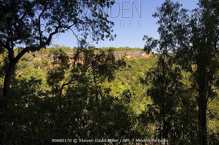 Sandstone cliffs containing the Mona Lisa Aboriginal Rock Art Shelter, Jowabinna Rock Art Safari Camp, Cape York, Queensland, Australia  -  Steven David Miller/ npl