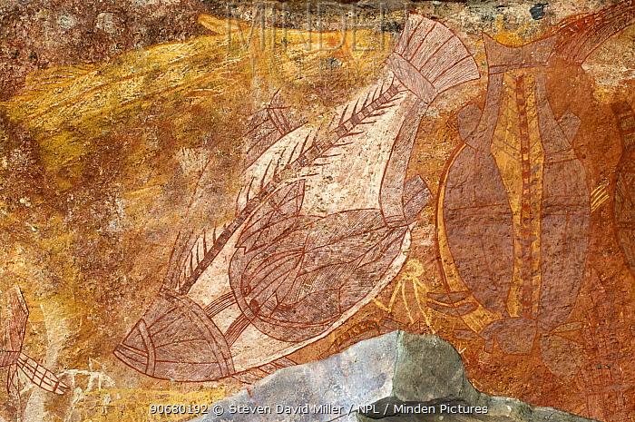 Aboriginal Xray-style art at the Ubirr Rock Art Shelter, Kakadu National Park, Northern Territory, Australia  -  Steven David Miller/ npl