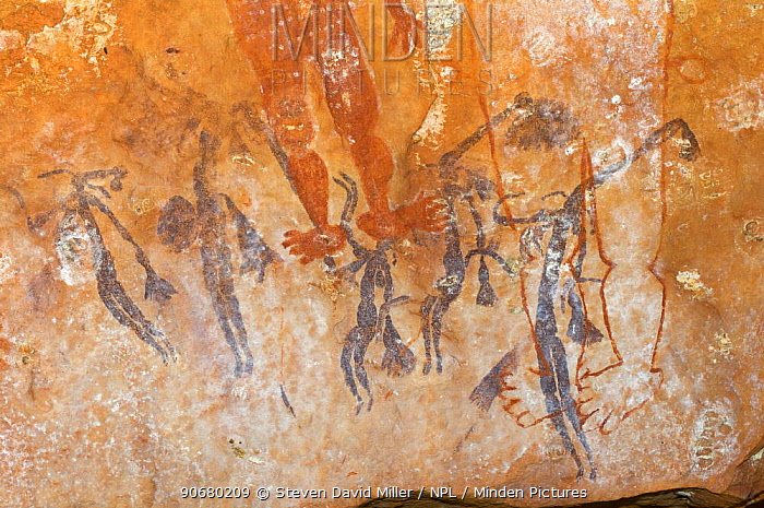 Ancient Wandjina figures painted over a much older panel of Bradshaw rock art, Northern Kimberley region and the Mitchell Plateau, Western Australia  -  Steven David Miller/ npl