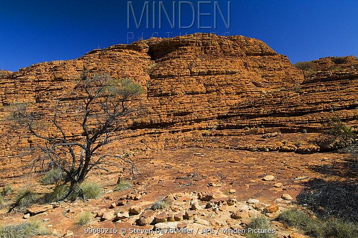 King Canyon, Watarrka National Park, Northern Territory, Australia, August 2007  -  Steven David Miller/ npl