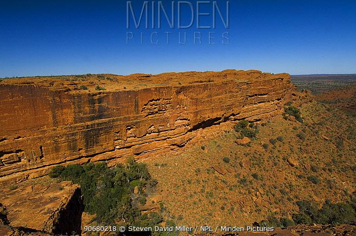 Sandstone gorge of King Canyon, Watarrka National Park, Northern Territory, Australia, August 2007  -  Steven David Miller/ npl
