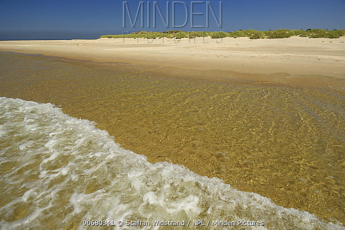 Deserted beach, Gotska Sand�n National Park, Sweden, July 2007  -  Staffan Widstrand/ npl