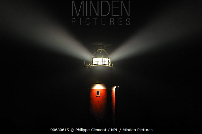 Minden Pictures stock photos - The Cocksdorp lighthouse shining at
