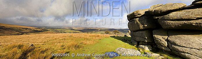 Moorland and Combestone Tor Dartmoor National Park, Devon, UK, February 2011  -  Andrew Cooper/ npl