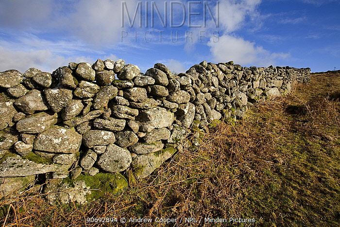 Granite dry stone wall Dartmoor National Park, Devon, UK, February  -  Andrew Cooper/ npl
