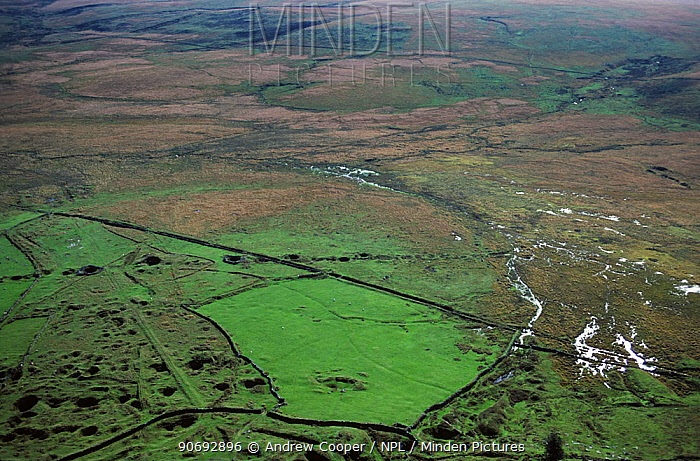Aerial view of Foxtrot Mire and tin works Devon, UK  -  Andrew Cooper/ npl
