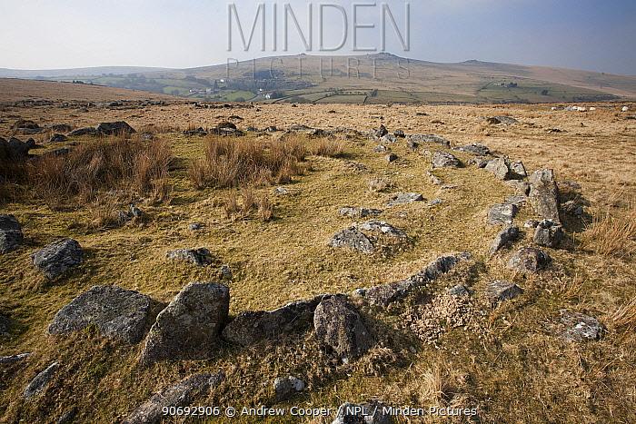 Merrivale hut circle, a bronze age settlement Dartmoor National Park, Devon, UK, March 2011  -  Andrew Cooper/ npl