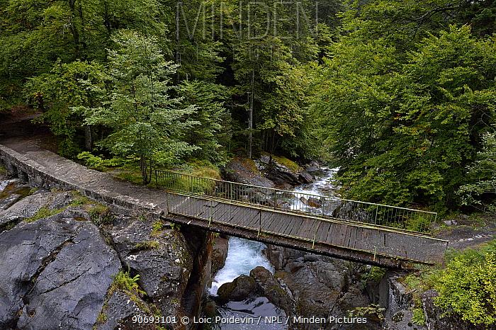 Bridge over stream at 'du pas de l'ours' French Pyrenees, September 2012  -  Loic Poidevin/ NPL