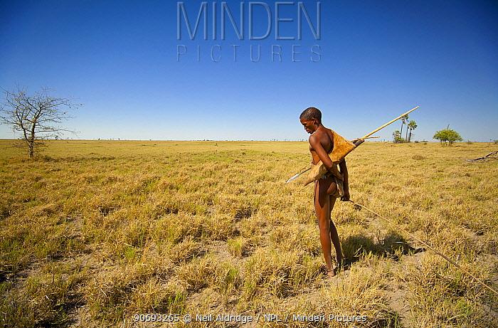 A young Zu, 'hoasi Bushman hunter searches for Spring Hare (Pedetes capensis) burrows on the vast open plains of the Kalahari, Botswana April 2012  -  Neil Aldridge/ npl