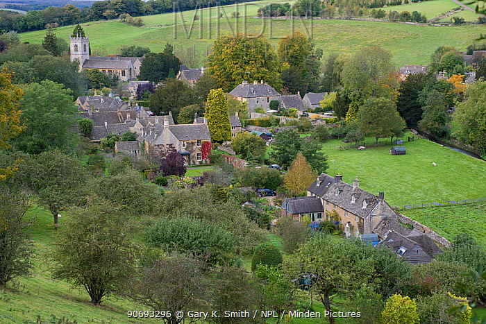 View of the village of Naunton, showing the village church of St Andrew's, Cotswolds, Gloucestershire, October 2012  -  Gary K. Smith/ npl