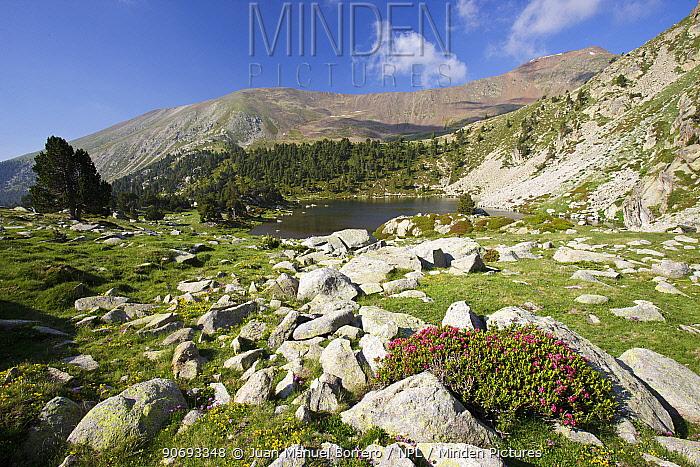 De la Pera Lakes, Tossa Plana de Lles, Pyrenees, Lleida Province, Spain, July  -  Juan Manuel Borrero/ npl