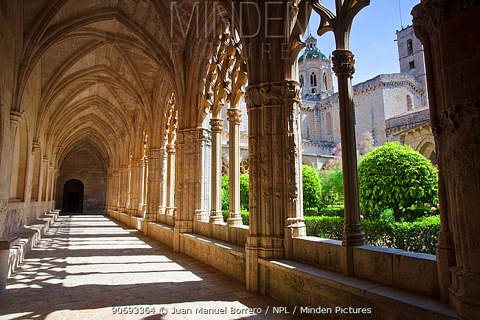Cloister of the Santes Creus Monastery, Tarragona Province, Spain, May  -  Juan Manuel Borrero/ npl