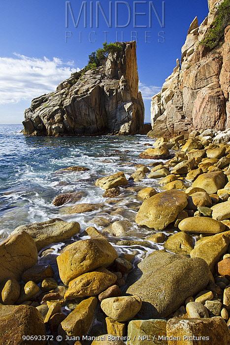 Punta de s'Agulla, Pinya Rosa, Girona Province, Spain, September  -  Juan Manuel Borrero/ npl