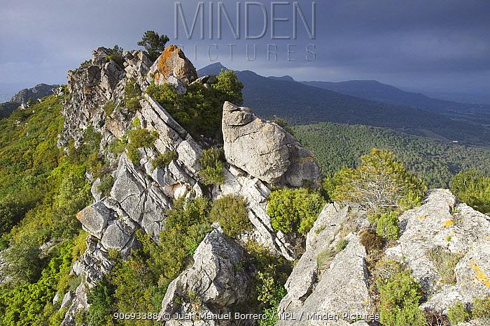 Carbonaria Mountain Range, Tossal Gros de Miramar, Tarragona Province, Spain, May 2012  -  Juan Manuel Borrero/ npl