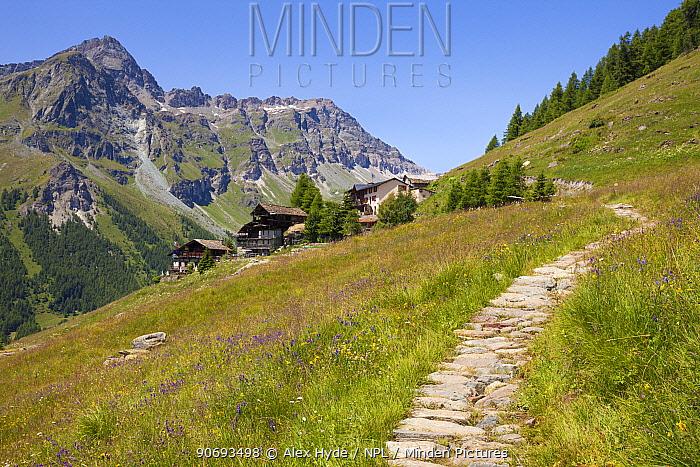 Path leading towards Rifugio Ferraro, Resy, Aosta Valley, Monte Rosa Massif, Pennine Alps, Italy July 2012  -  Alex Hyde/ npl