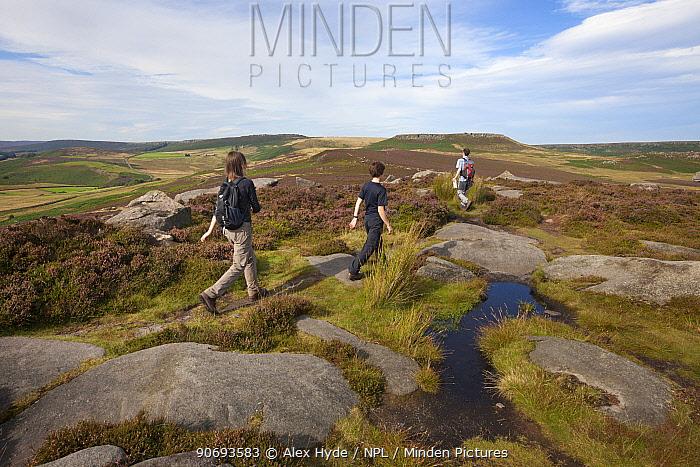 Walkers on Over Owler Tor, Peak District National Park, South Yorkshire, UK September 2012  -  Alex Hyde/ npl
