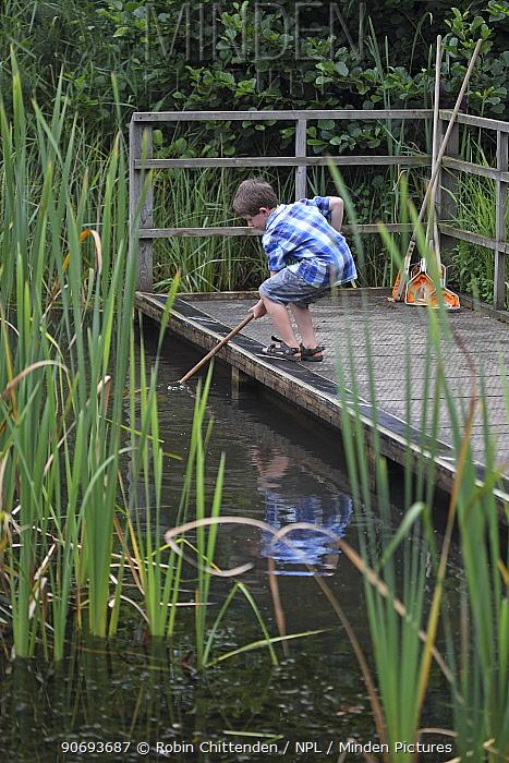 Boy, pond dipping RSPB Minsmere, Suffolk, UK, August 2012  -  Robin Chittenden/ npl