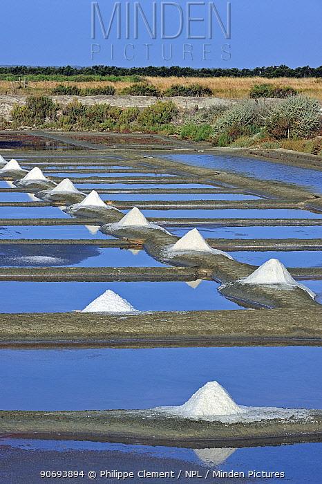 Salt pan for the poduction of Fleur de sel, sea salt on the island Ile de Re, Charente-Maritime, France  -  Philippe Clement/ npl