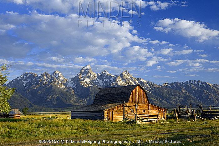 Old farm building along the Mormon Road, Grand Teton National Park Wyoming, USA, July 2011  -  Kirkendall-spring/ npl