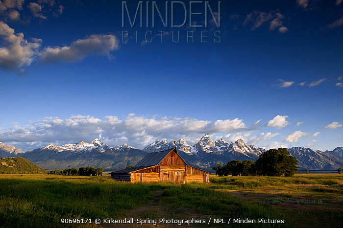 Traditional old barn along The Mormon Road in Grand Teton National Park Wyoming, USA, July 2011  -  Kirkendall-spring/ npl