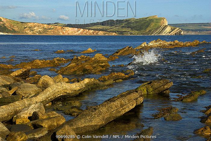 Mupe Rocks, Mupe Bay in East Dorset, UK, September 2007  -  Colin Varndell/ npl