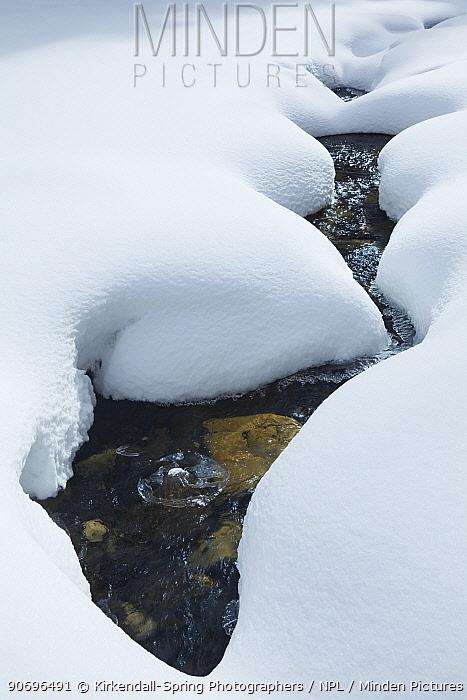 Snow along Pebble Creek, Yellowstone National Park Wyoming, USA, January 2012  -  Kirkendall-spring/ npl