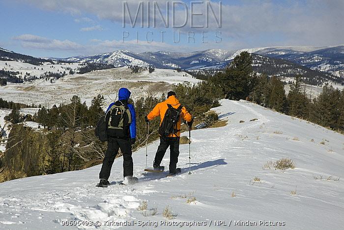 Snowshoeing on Specimen Ridge, Yellowstone National Park Wyoming, USA, January 2012  -  Kirkendall-spring/ npl