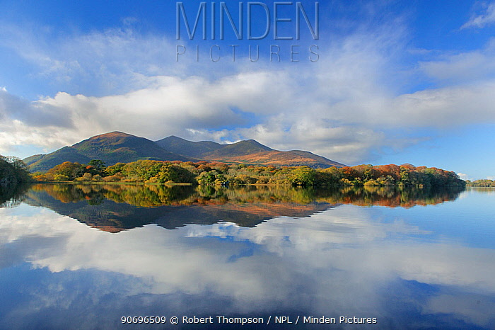 Macgillycuddy's reeks and Lough Lean lower, photographed from Ross Castle, Killarney, County Kerry, Ireland, November 2011  -  Robert Thompson/ npl