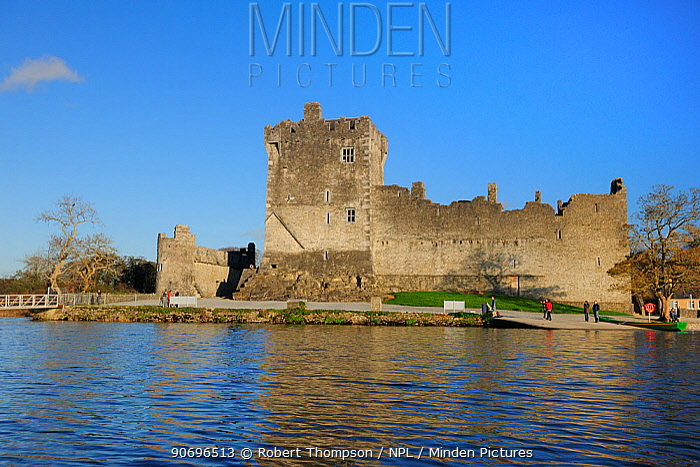 Ross castle, Lough Lean lower, Killarney national parl, County Kerry, Ireland, October  -  Robert Thompson/ npl