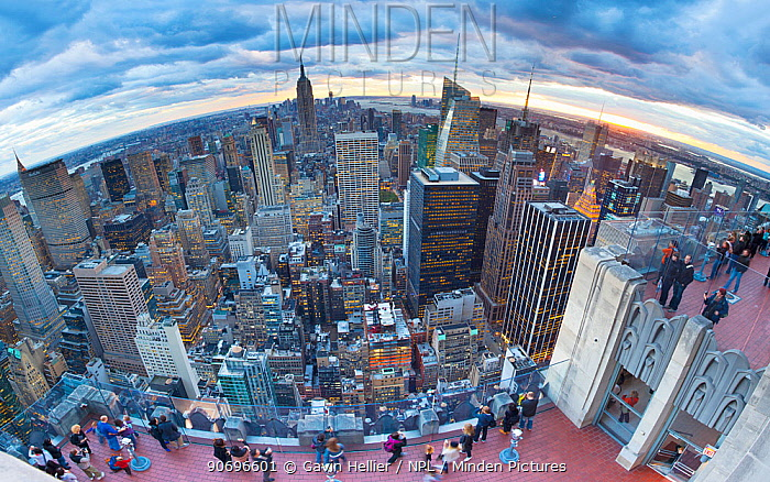 Wide angle Manhattan view towards Empire State Building at sunset from Top of the Rock, at Rockefeller Plaza, New York, USA 2011  -  Gavin Hellier/ npl