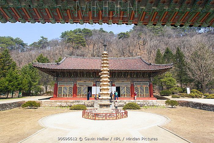 Pohyon Buddhist Temple, Myohyangsan, Democratic Peoples' Republic of Korea (DPRK), North Korea, April 2012  -  Gavin Hellier/ npl