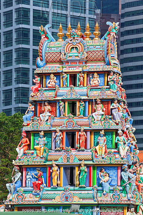 Close up of the Gopuram of the Sri Mariamman Temple, a Dravidian style temple in Chinatown, Singapore, 2012  -  Gavin Hellier/ npl