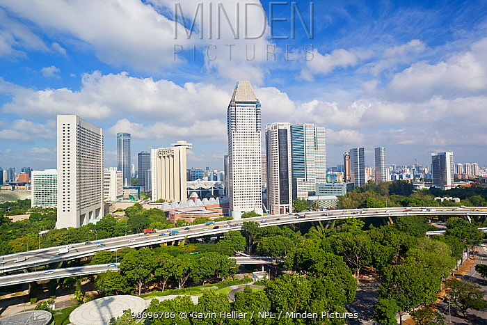 Elevated view over the modern city skyline, Singapore, 2012  -  Gavin Hellier/ npl
