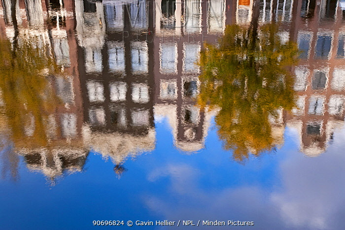 Traditional Gabled houses and reflections in canal, Amsterdam, Holland, Netherland, 2007  -  Gavin Hellier/ npl