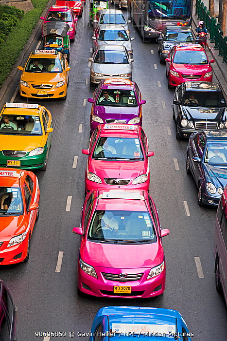 Colourful Taxi cabs on Ploenchit Road, Sukhumvit, Bangkok, Thailand, 2010  -  Gavin Hellier/ npl