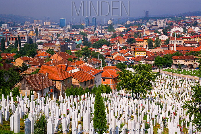 Elevated view over the city and war cemetary at Sarajevo, Bosnia and Herzegovina, Balkans 2007  -  Gavin Hellier/ npl