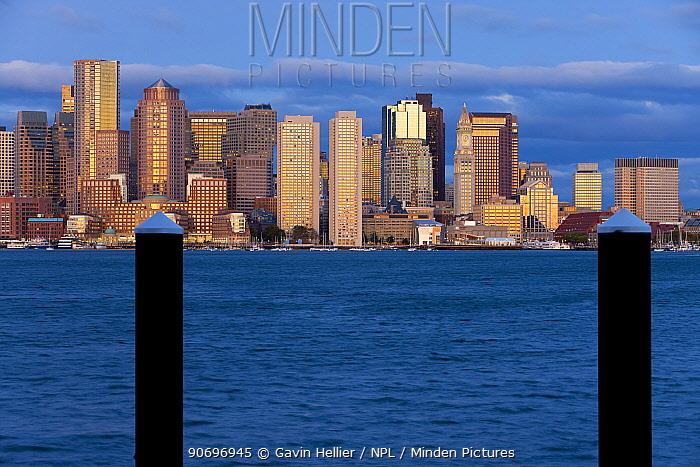 City skyline viewed across harbour at dawn, Boston, Massachusetts, USA 2009  -  Gavin Hellier/ npl