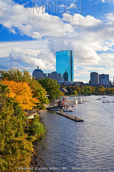 Skyline viewed over the Charles river, Beacon Hill and downtown, Boston, Massachusetts, USA 2009  -  Gavin Hellier/ npl