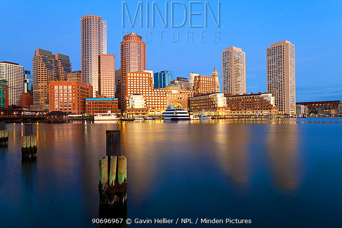 Skyline and inner harbour including Rowes Wharf at dawn, Boston, Massachusetts, USA 2009  -  Gavin Hellier/ npl