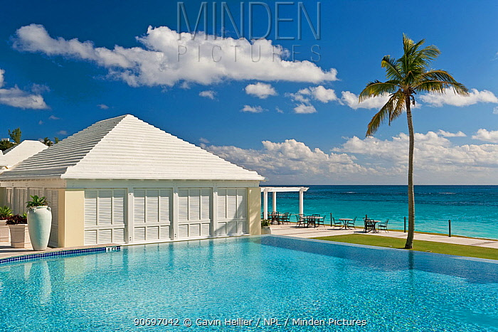 Infinity pool at luxury resort along the South Coast, Bermuda, 2007  -  Gavin Hellier/ npl
