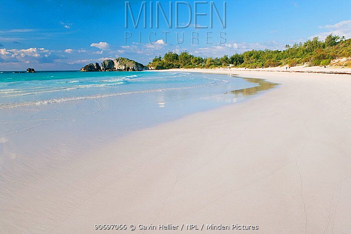 Horseshoe Bay, part of the South Coast beaches, Southampton Parish, Bermuda 2007  -  Gavin Hellier/ npl